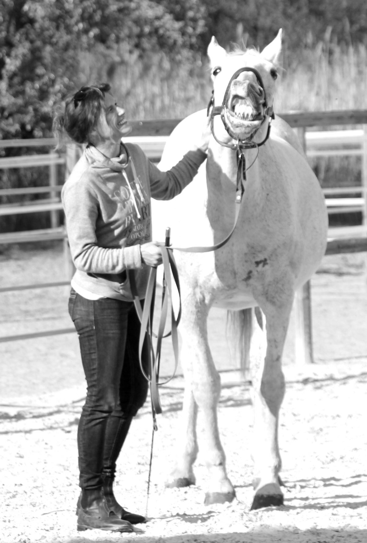 In memorial of Daria (1987-2017) My soul-sister in the body of a horse.